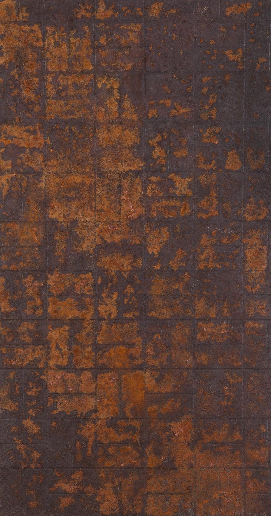 Untitled, 2016, Steel wool and rust on plywood, 150x80 cm (3).jpg