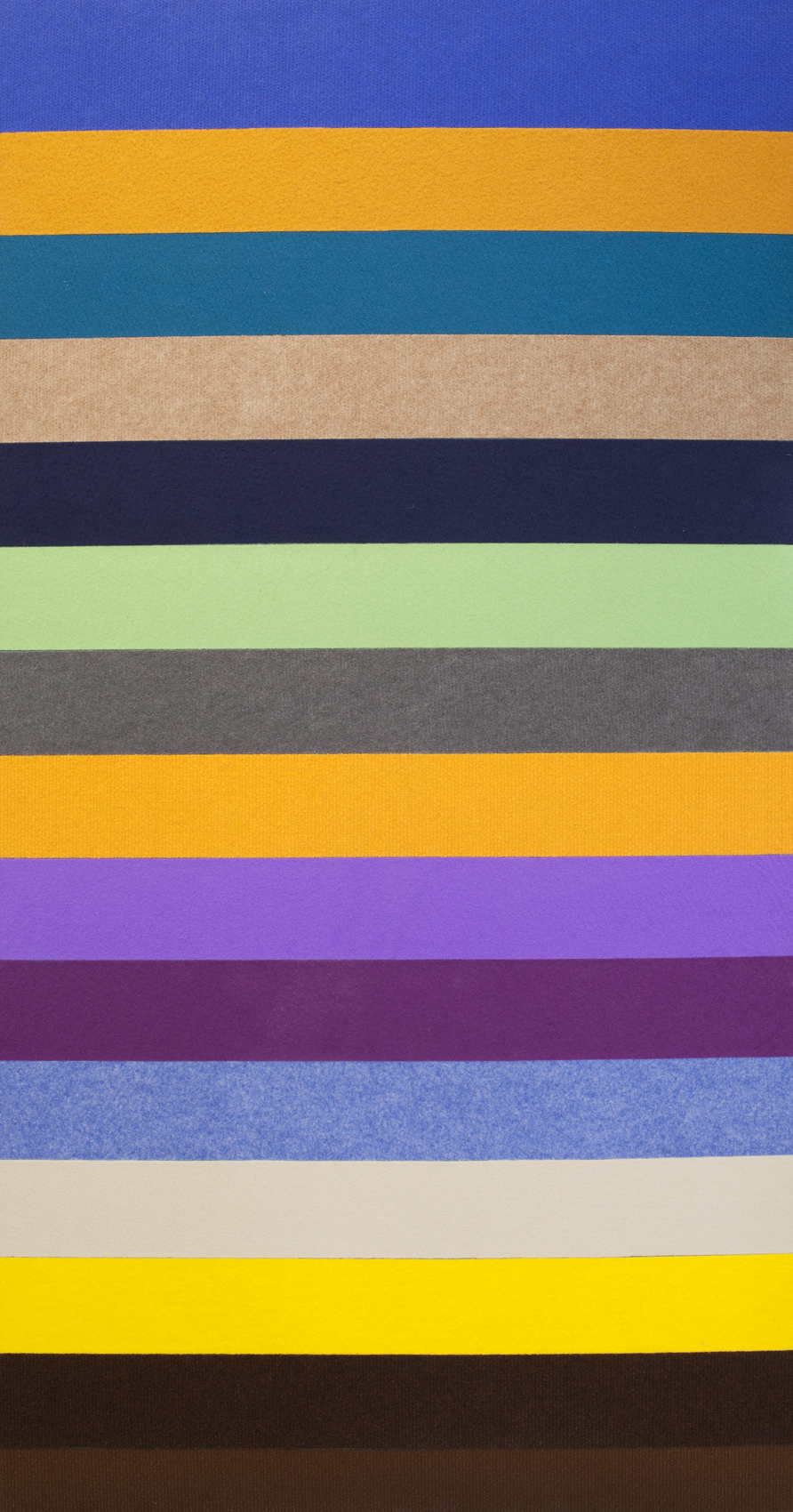 Untitled, 2016, wall to wall carpet on plywood, 150x80 cm (4).jpg