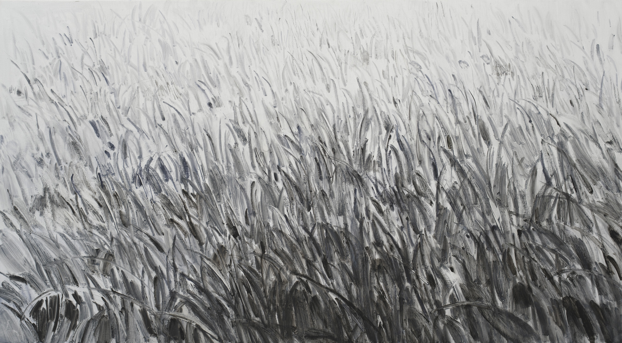 Shi Zhiying   Grass , 2018 Oil on canvas 110 x 200 cm