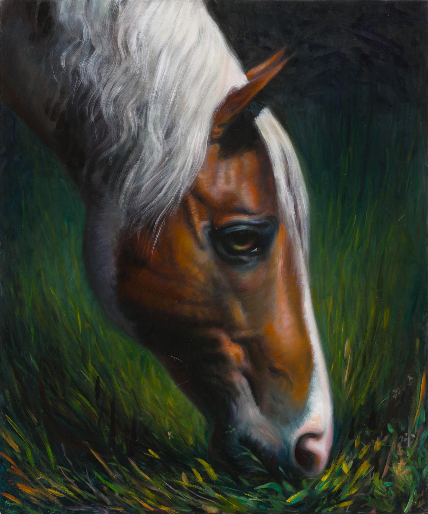TM Davy   horse (xoxx)    2016 Oil on linen 61 x 51 cm