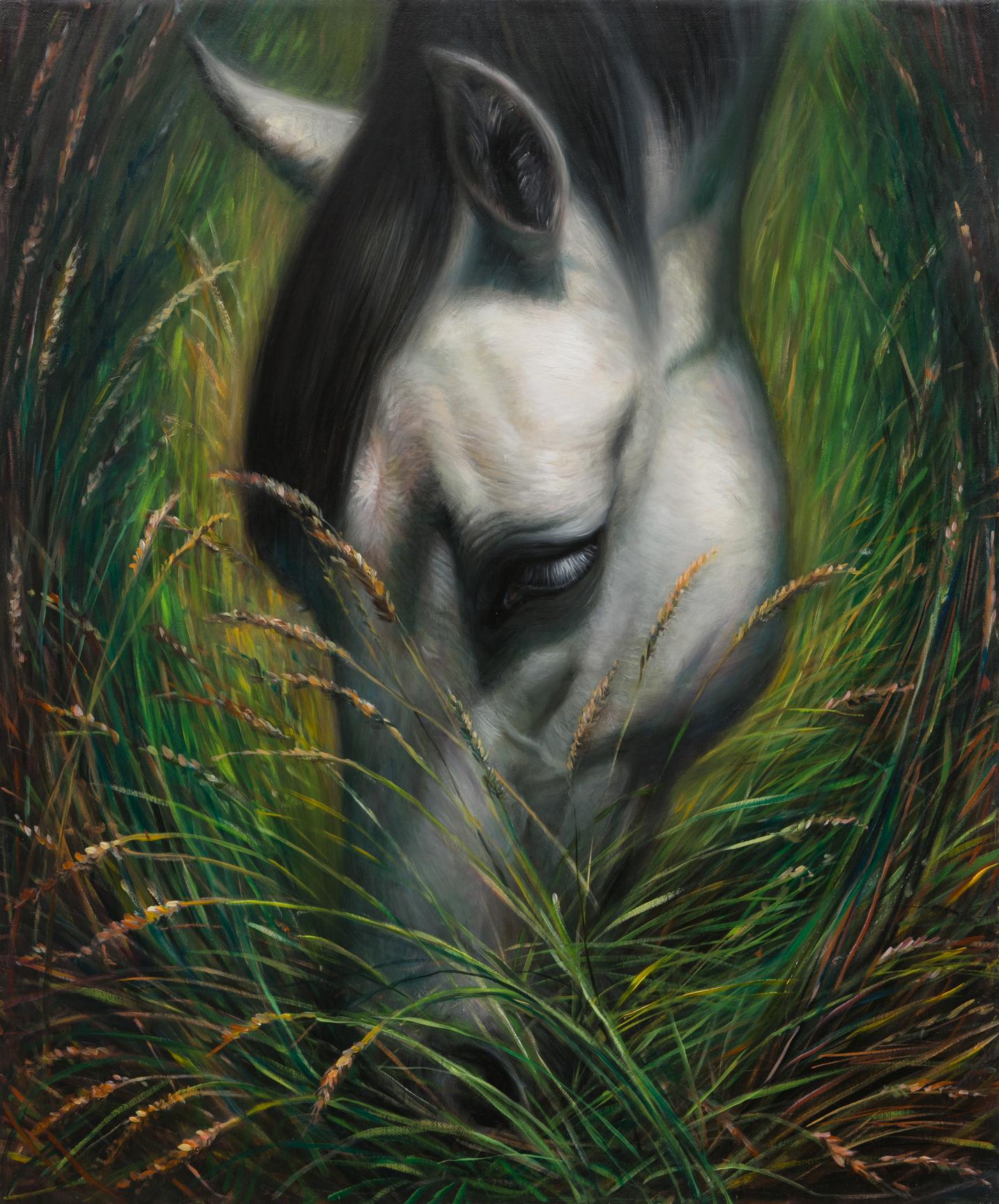 TM Davy   horse (xooo)  2016 Oil on linen 61 x 51 cm