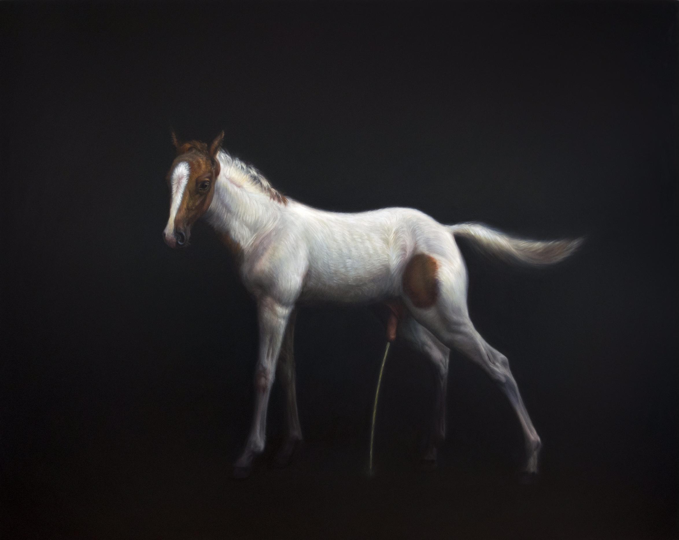 TM Davy   horse(xx)  2017 Oil on linen 200 x 250 cm