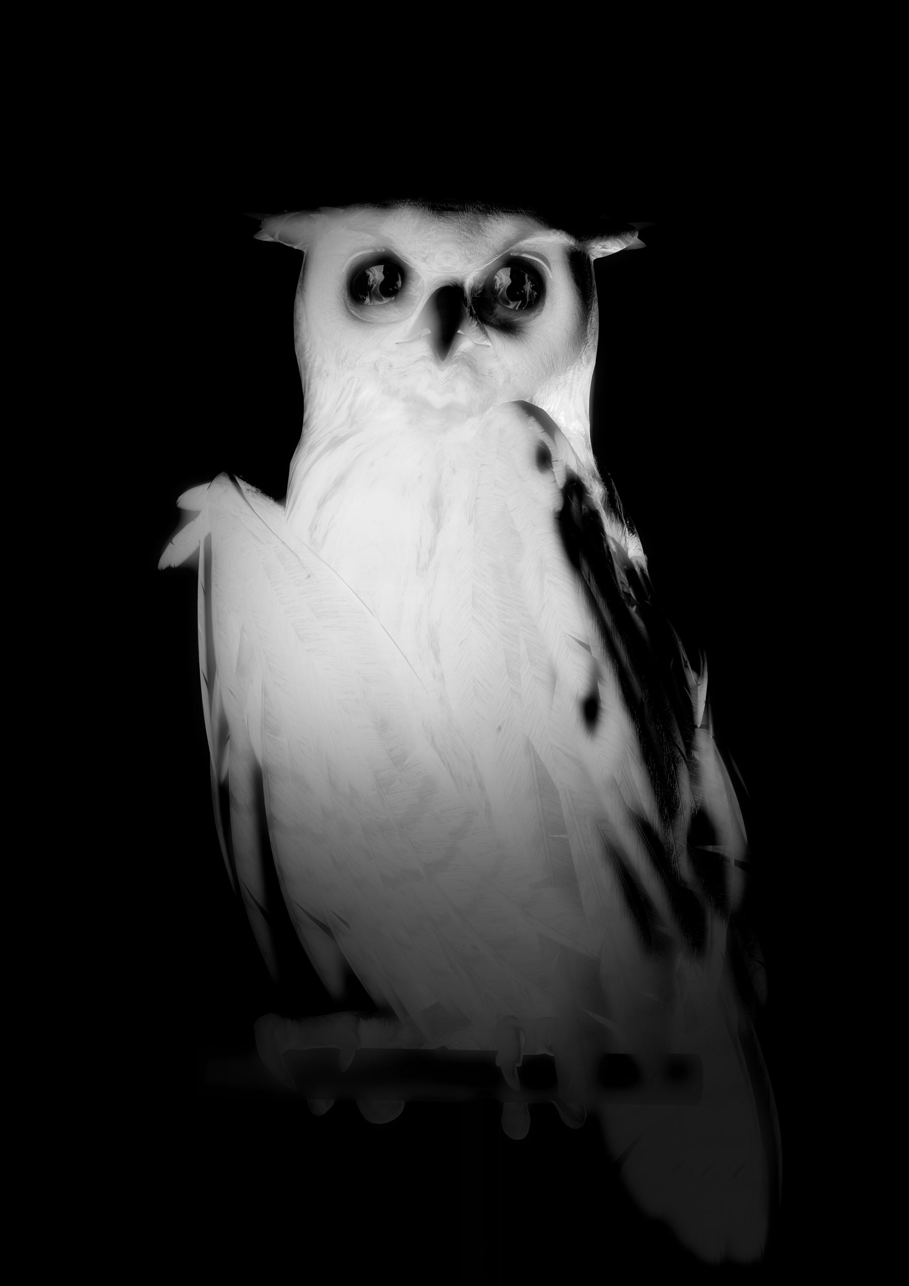 Ann Lislegaard   Oracles, Owls…Some Animals Never Sleep Ghost  2012-2018 3D-Animation with sound, 10:35 minutes Unique