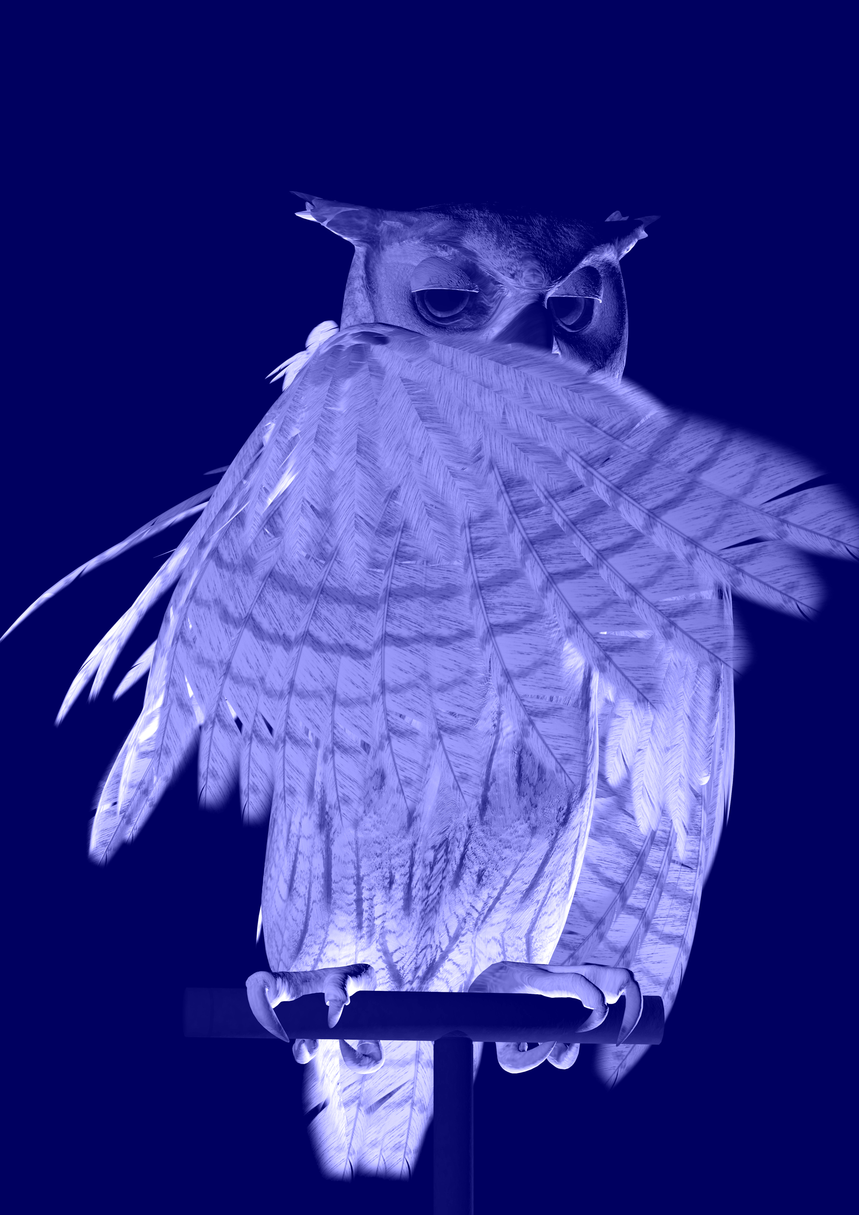 Ann Lislegaard   Oracles, Owls…Some Animals Never Sleep Blue  2012-2018 3D-Animation with sound, 10:35 minutes Unique