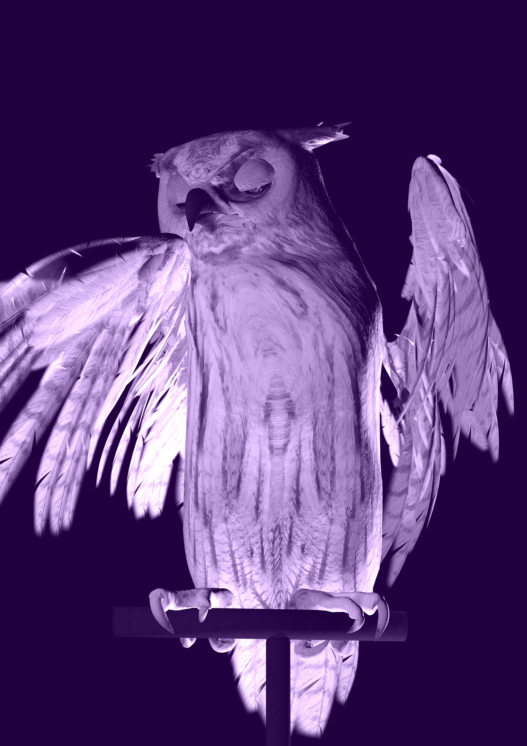 Ann Lislegaard   Oracles, Owls…Some Animals Never Sleep Violet  2012-2018 3D-Animation with sound, 10:35 minutes Unique