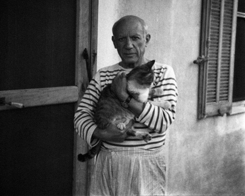 Picasso The man who never left the country side -