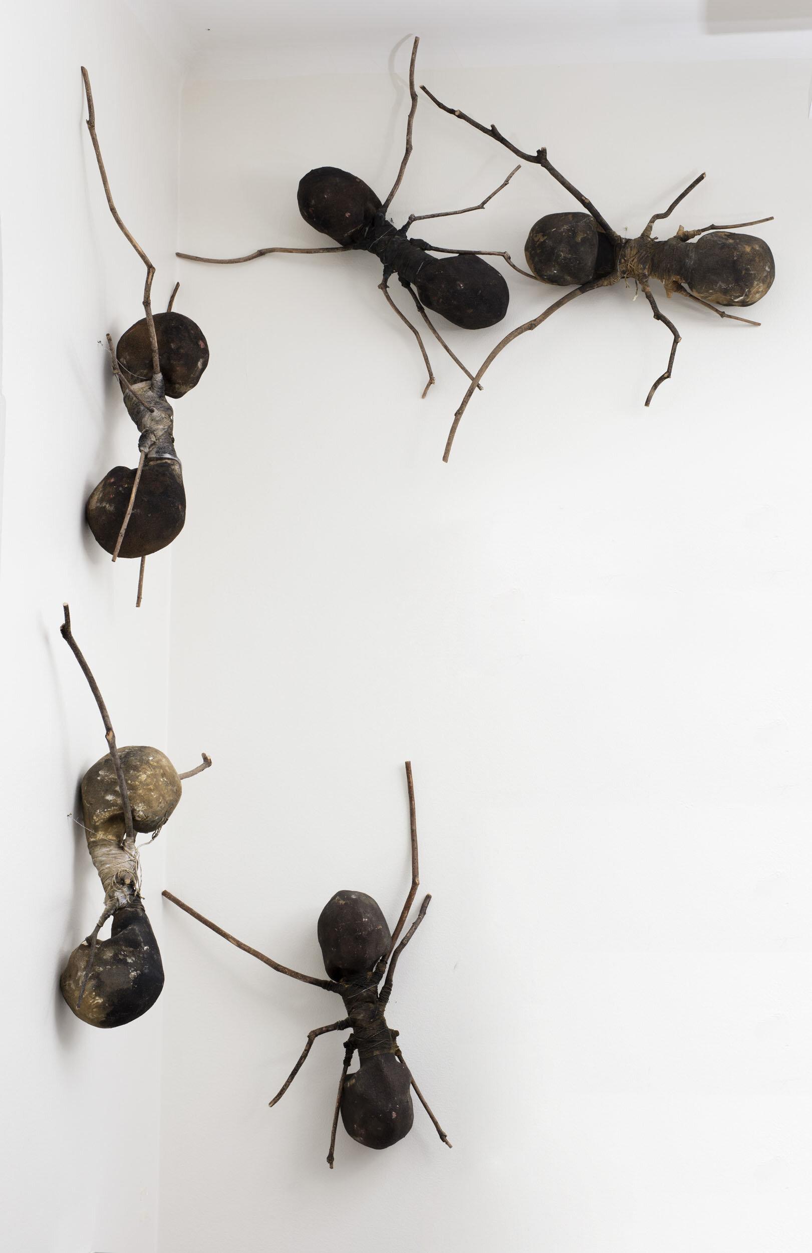 Rafael Gomezbarros   Utan titel, ur: Casa Tomada  2013 Individuellt numrerade Skulpturer (5), gipsavgjutningar av döskallar,  grenar och textil  Vardera ca 78 x 60 cm