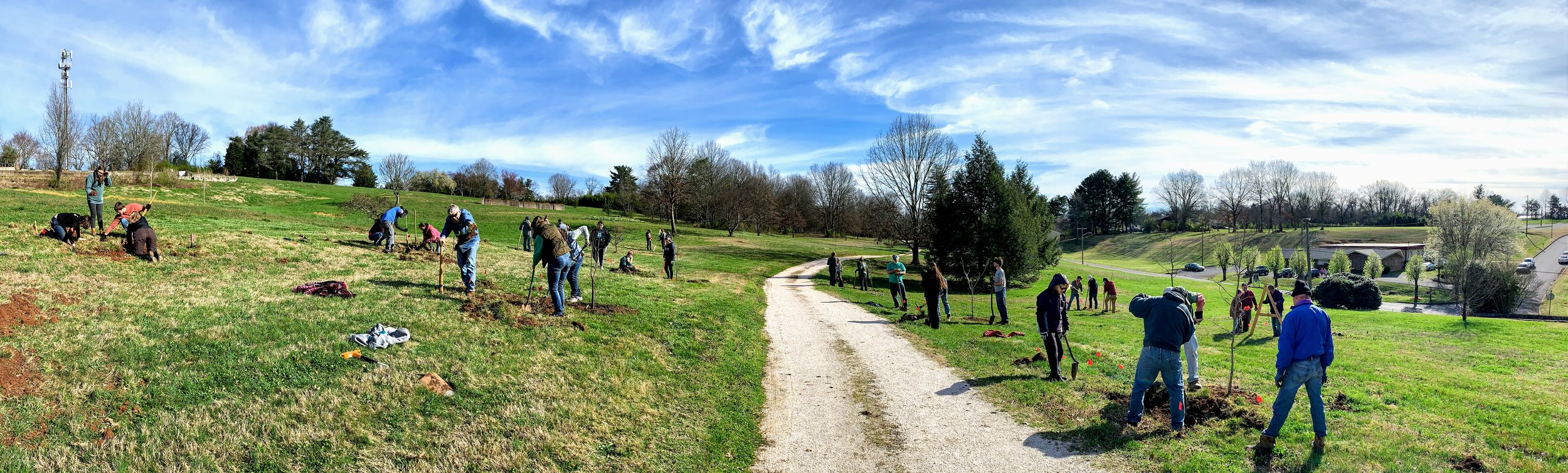 Tree Planting March 2019 at the  Knoxville Botanical Garden and Arboretum  in collaboration with the  Center for Urban Agriculture .
