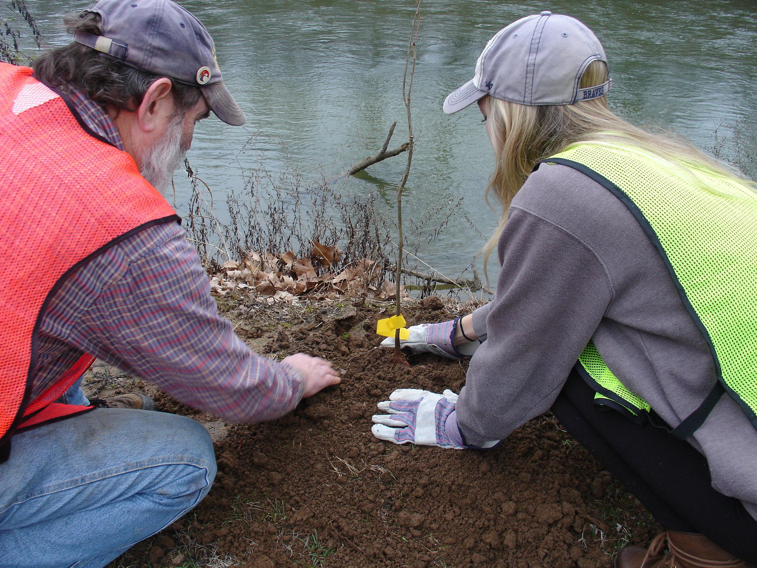 Holston River Park Planting