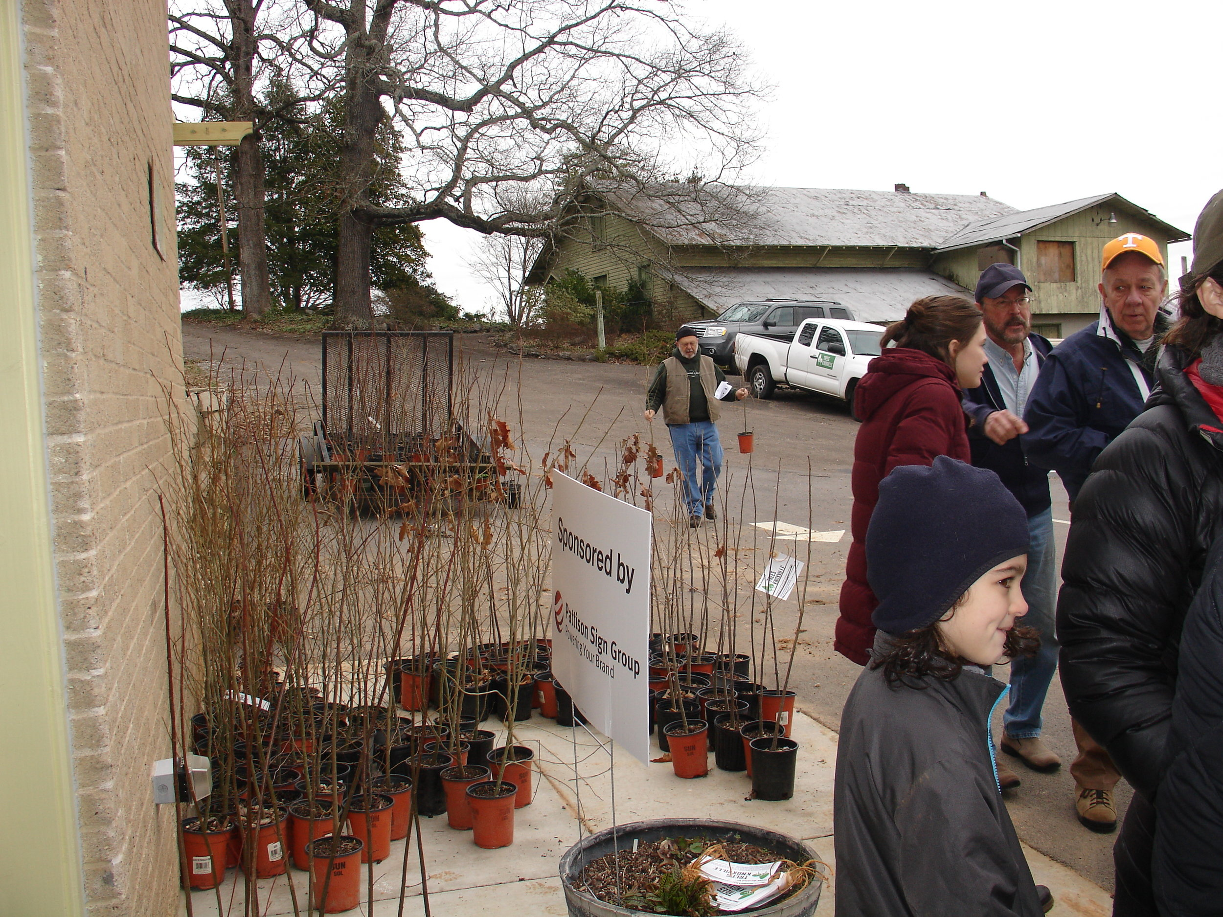 Tree Giveaway 2019