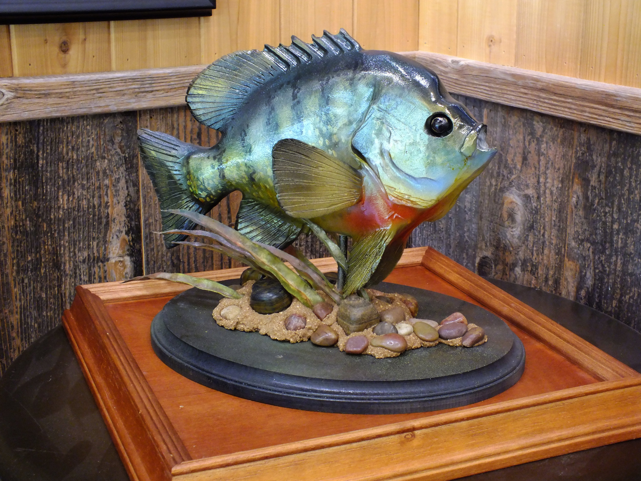 Bedding Blue Gill  $275.00 with Case