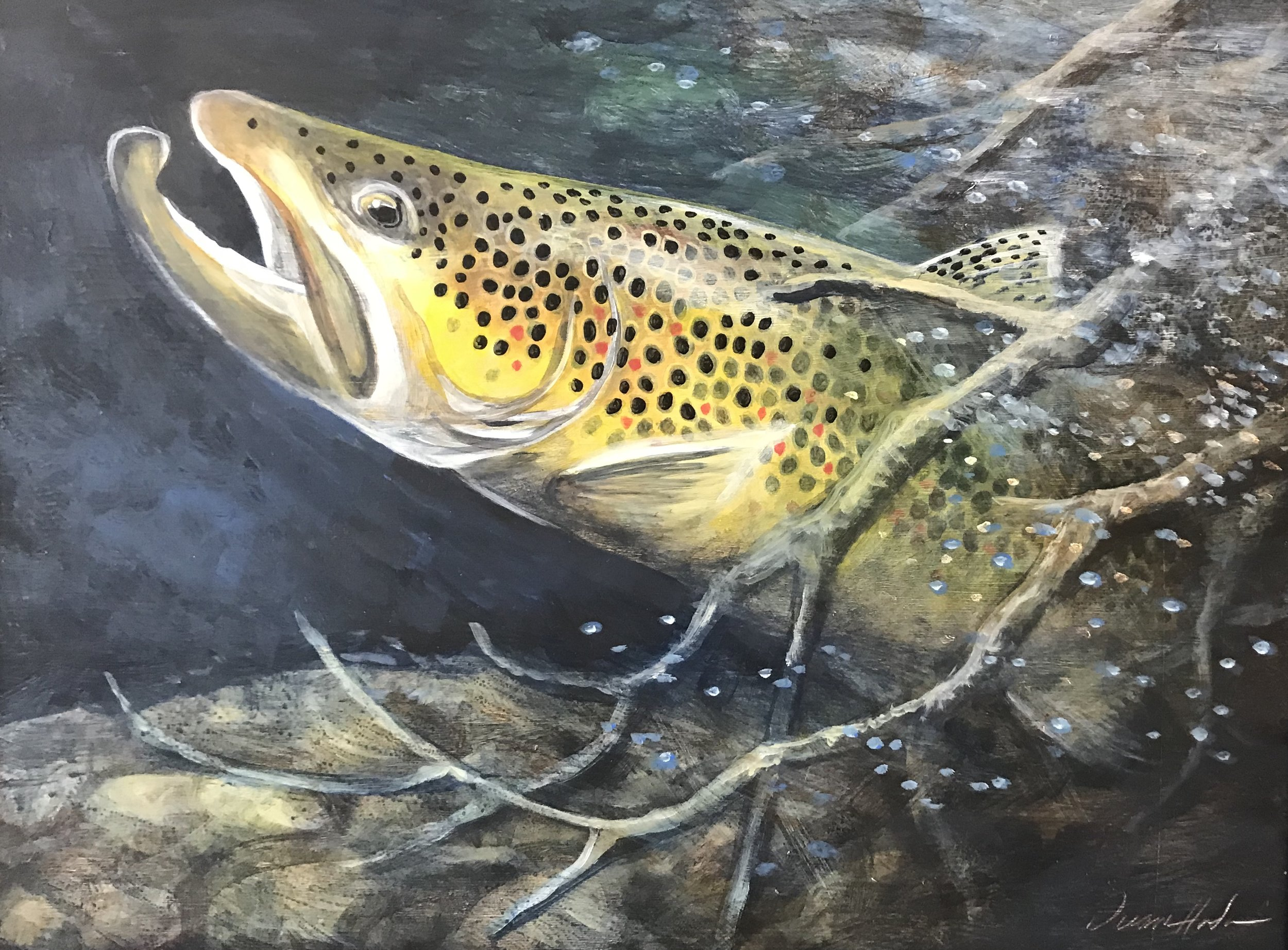 Brown Trout - Acrylic16 x 20$960.00