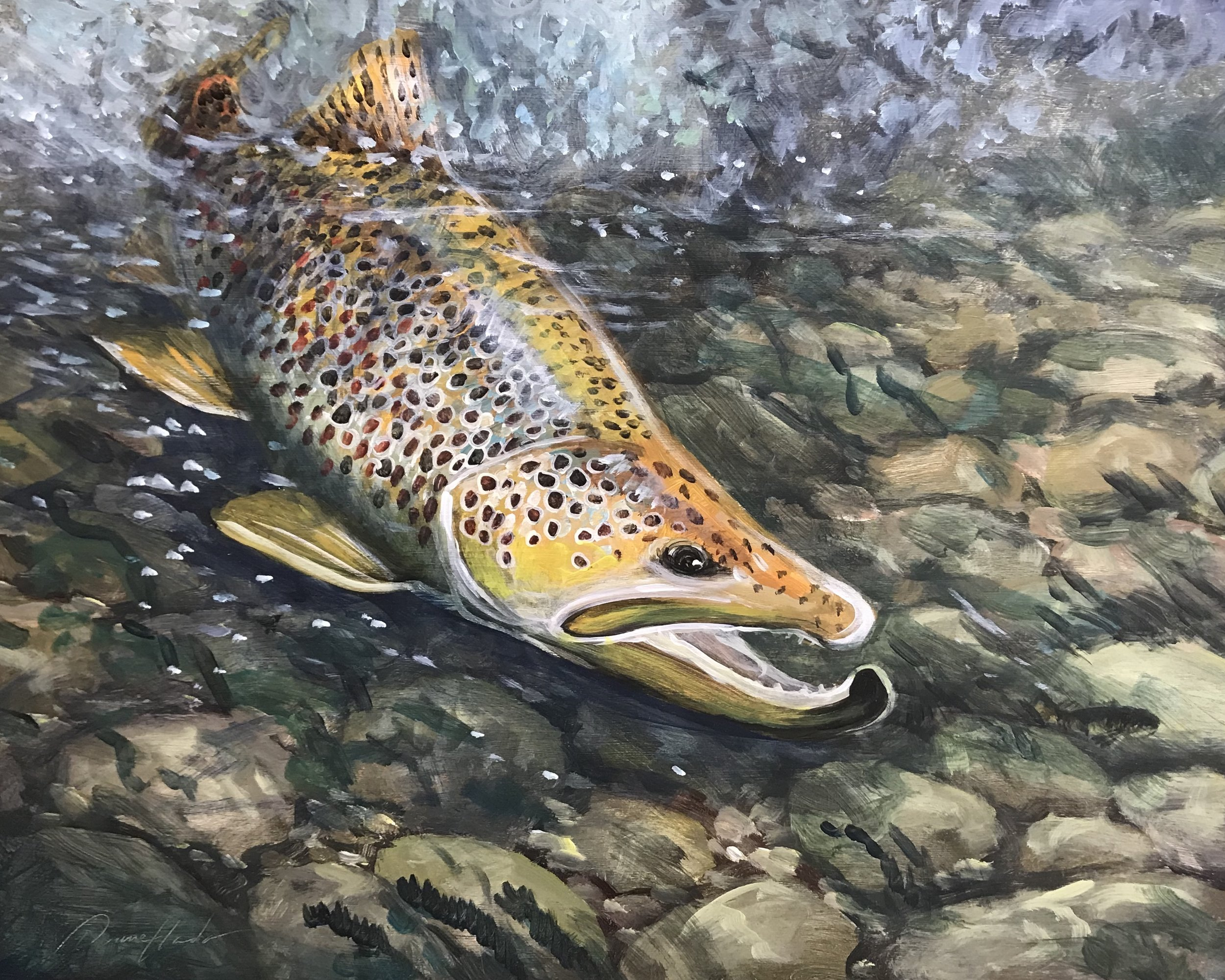 Brown Trout Beauty - Acrylic18 x 24$1296.00