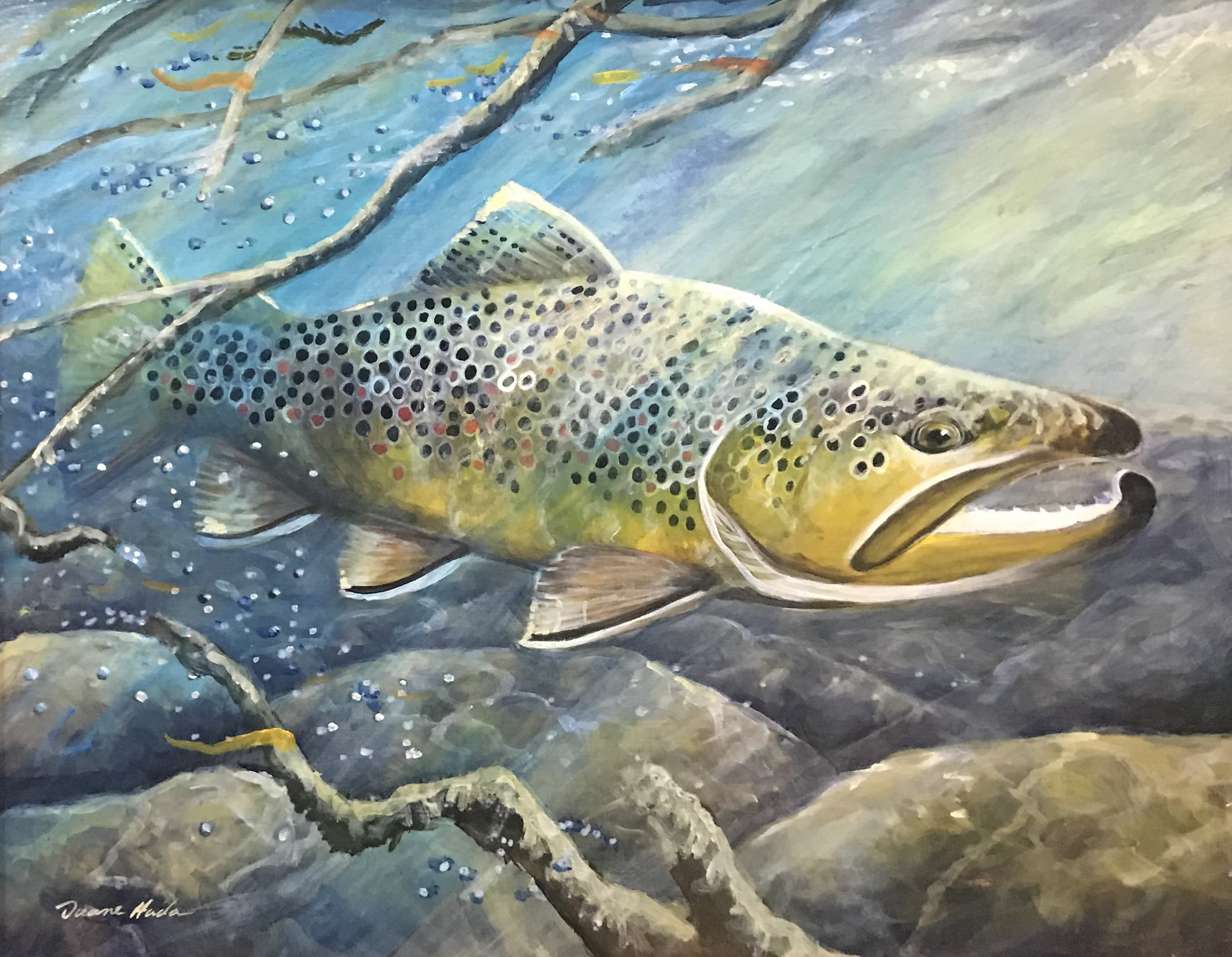 Tailwater Brown Trout - Acrylic16 x 20$960.00