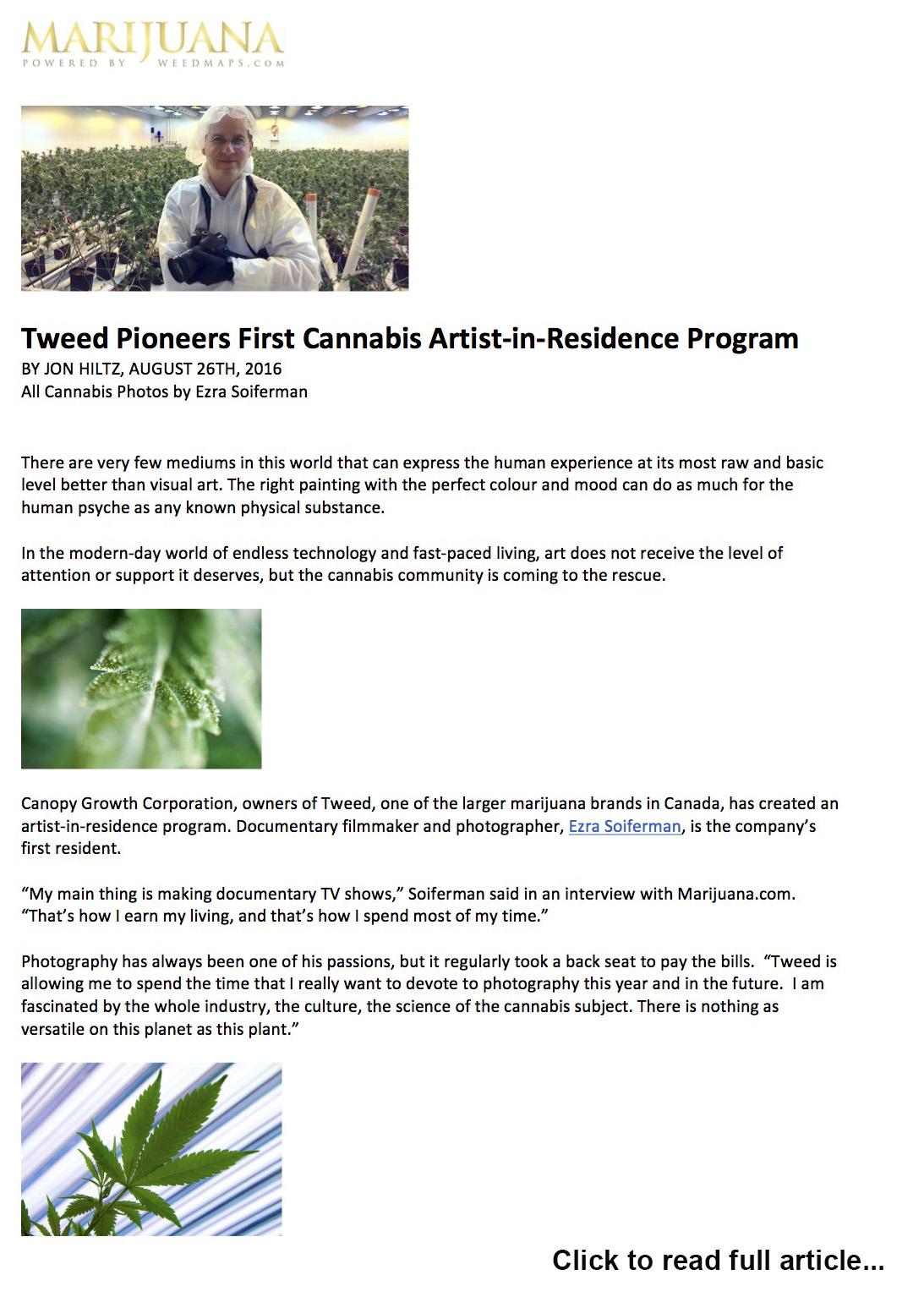 Tweed Artist-in-Residence - Marijuana.com feature story, 2016.