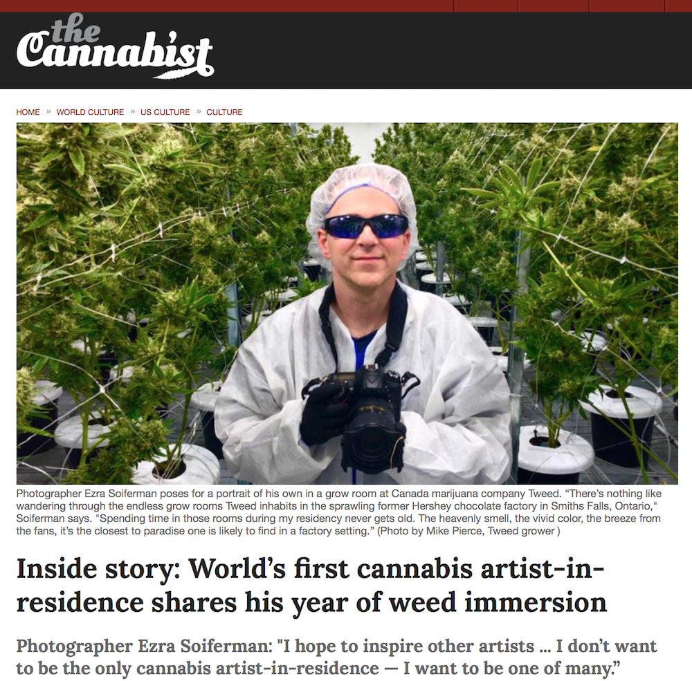 Tweed Artist-in-Residence profile, interview and photo spread, The Cannabist, July 2017