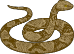 snake1.png
