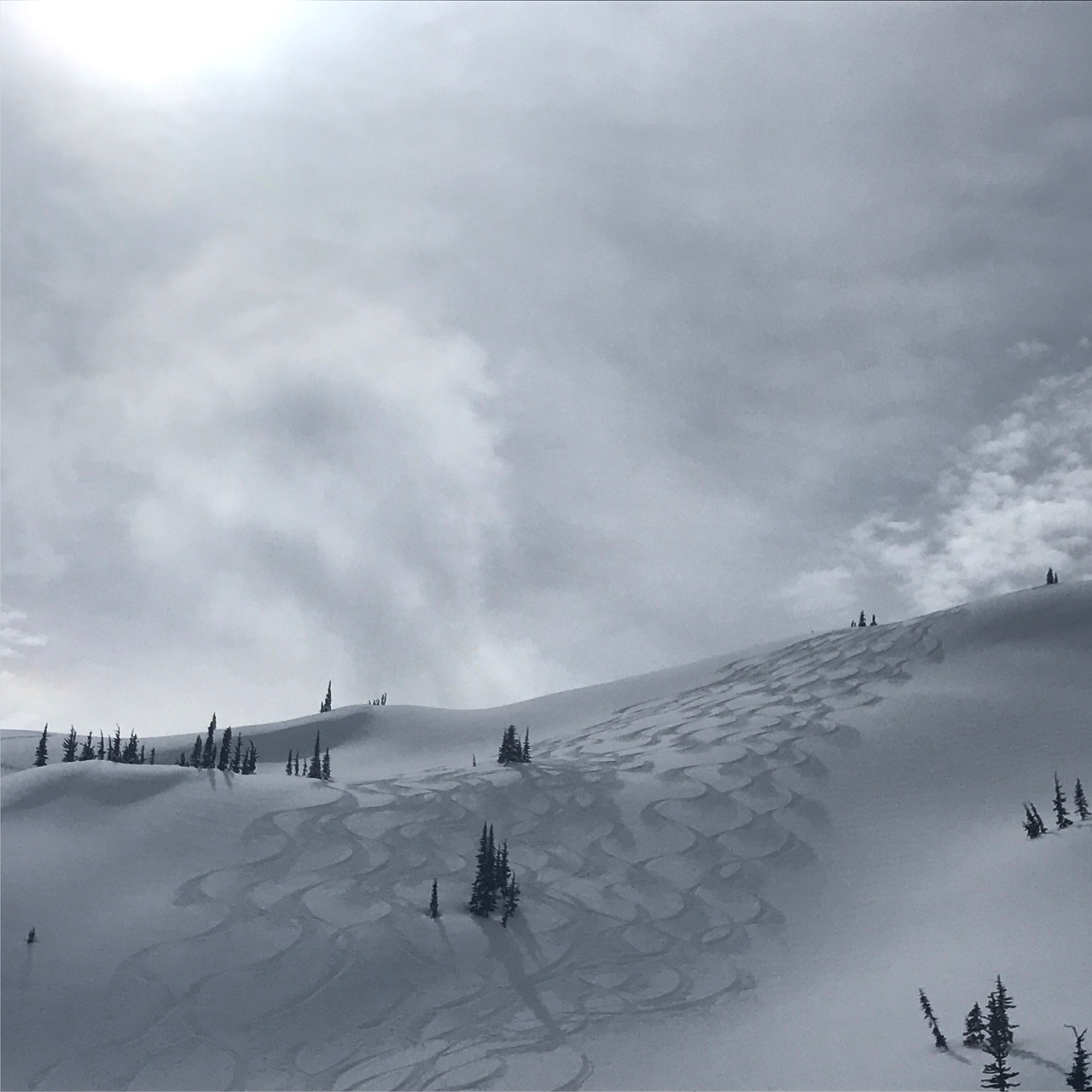 Powder skiing on day 1