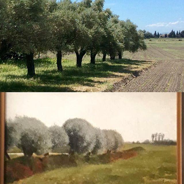 Strange coincidence..was Vilhelm Hammershøi at l'Ameillaud!? #olivetrees #inspiration #correspondence #danishpainter #artlover