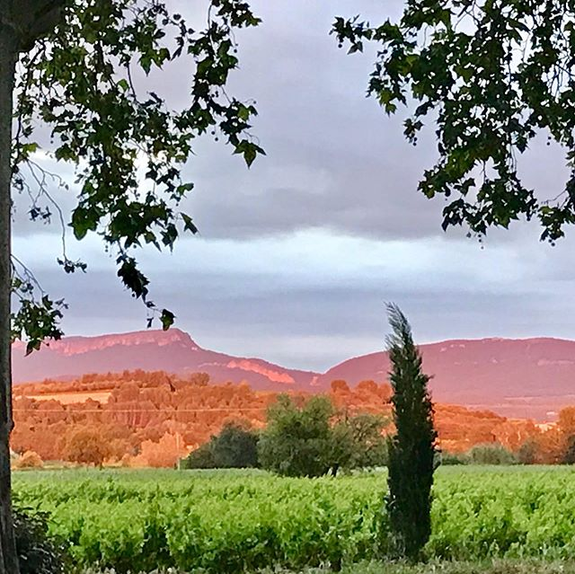 Incredibly enlightning sunset..#provence #cairanne #rhonevalley #beauty #beautifulsky #beautifulsunset #holidayrental #vacation on a #vineyard