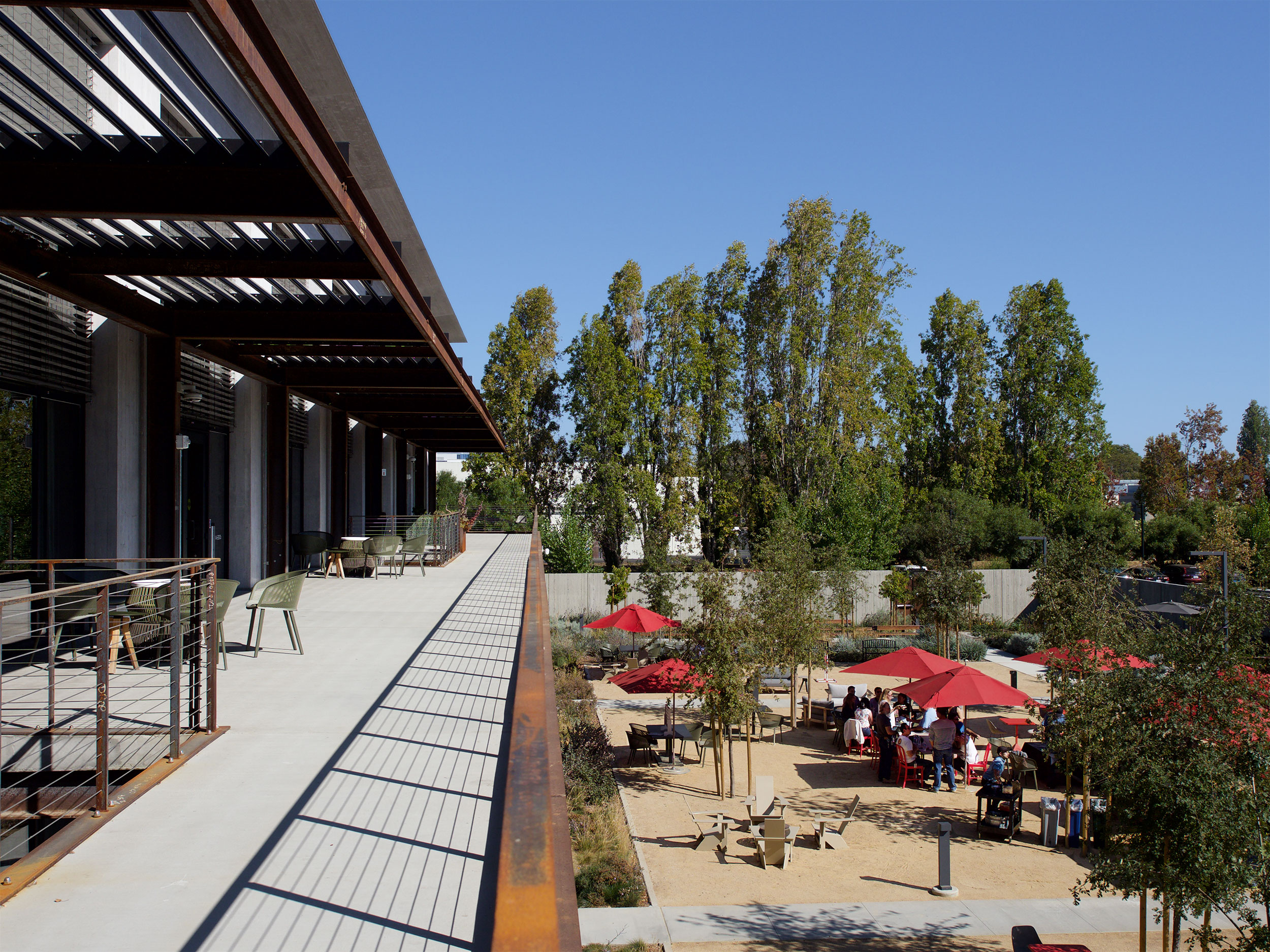 Google at 1212 Bordeaux, Garden, Courtyard, Terrace, Biophilia, Natural Habitat, Light, Gathering