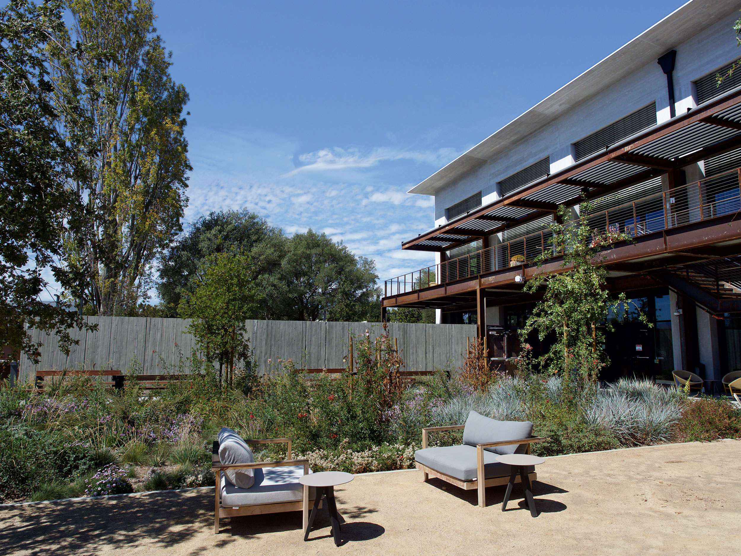 Google at 1212 Bordeaux, Garden, Courtyard, Terrace, Biophilia, Natural Habitat, Light, Gathering, Outdoor Room