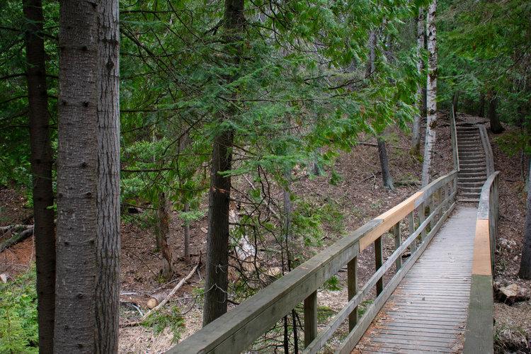 Hillfield Trail