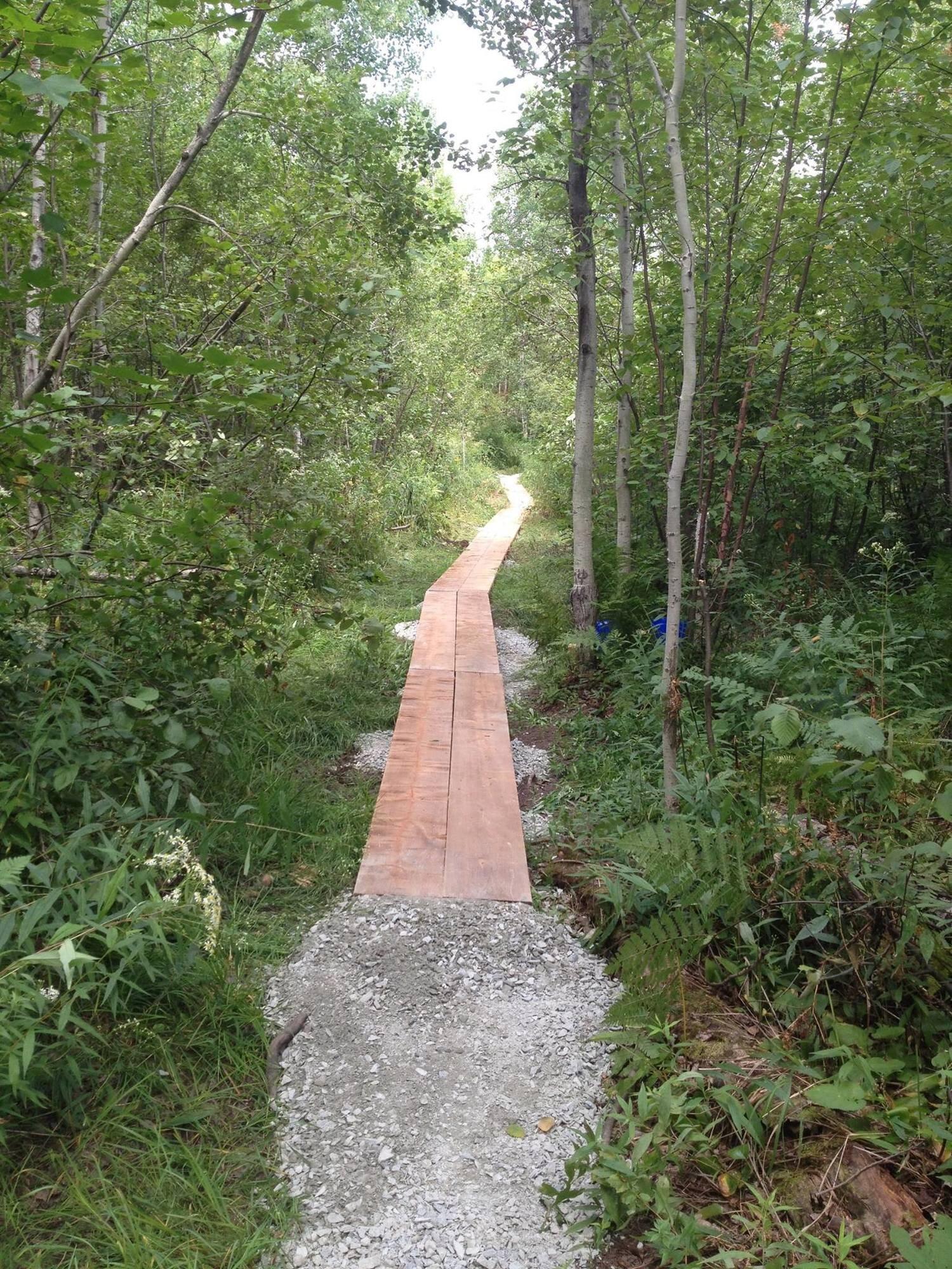 Laurentian University Trail