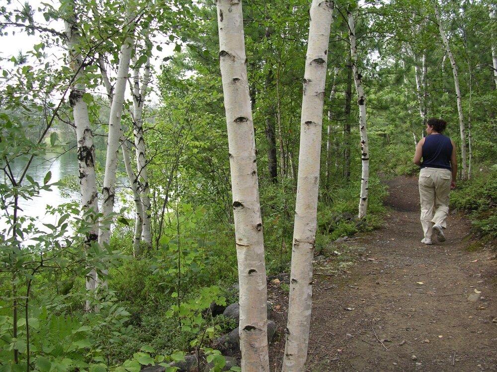 Meatbird Trail