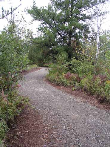 HOWARD'S NATURE TRAIL