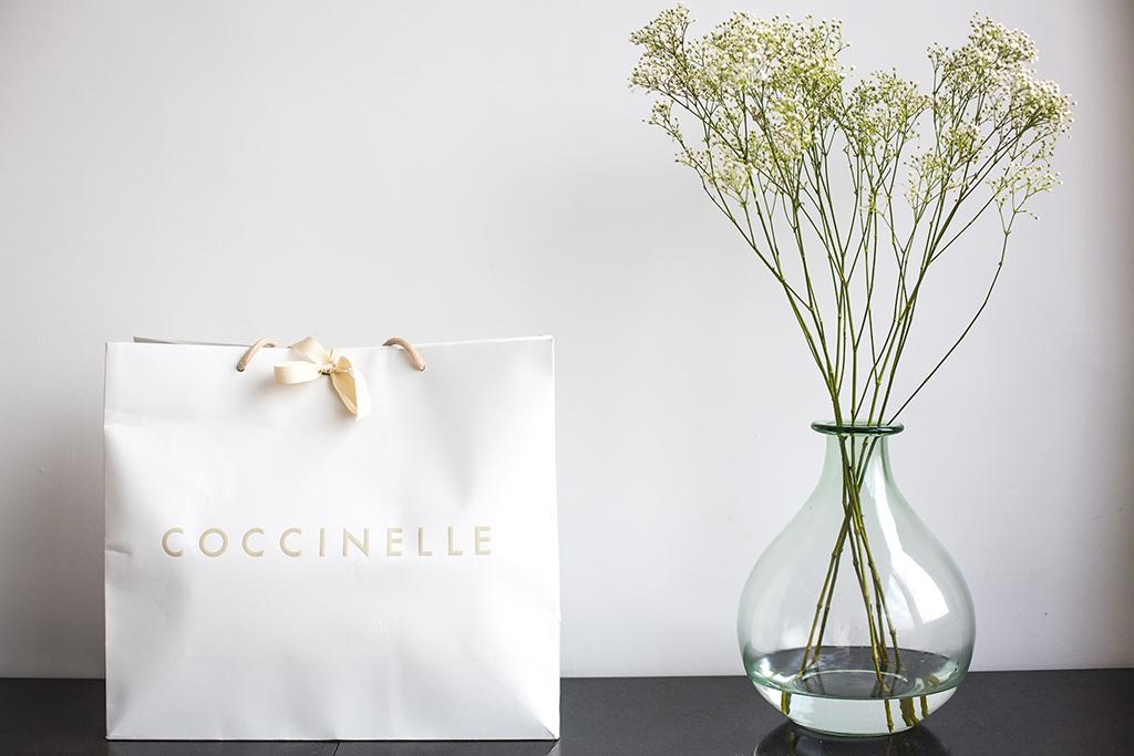 Coccinelle_1.jpg