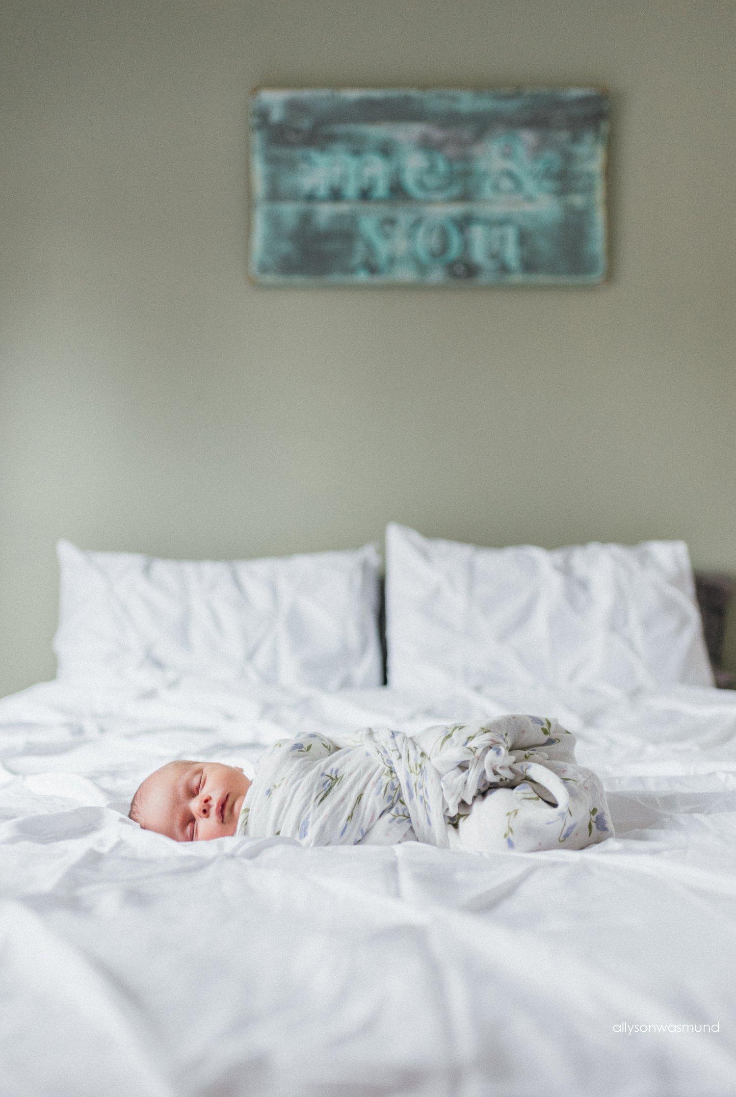 hudson-wisconsin-newborn-photographer_1313.jpg