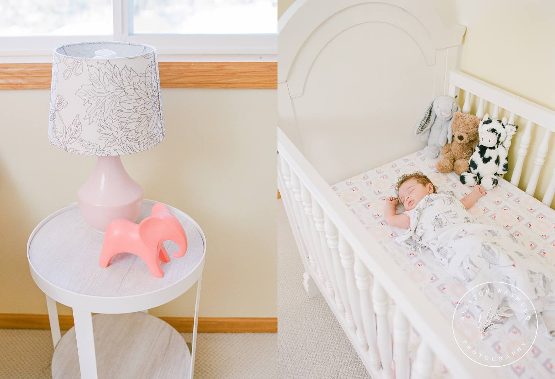 blaine-mn-newborn-photographer-baby-sylvia_0018.jpg