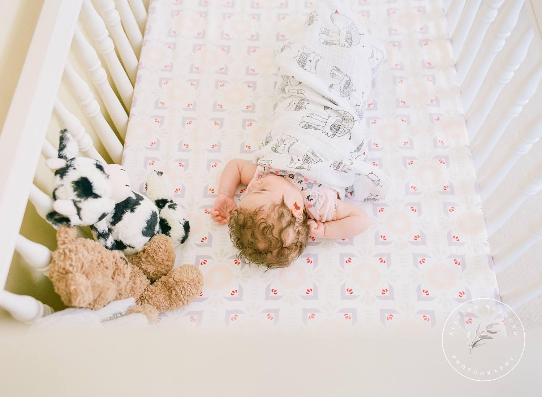 blaine-mn-newborn-photographer-baby-sylvia_0019.jpg