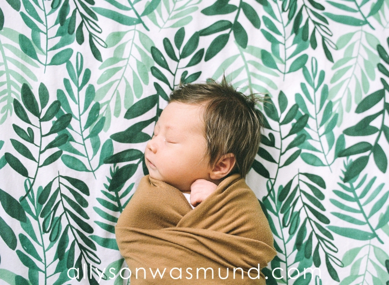 st-paul-mn-natural-newborn-photographer