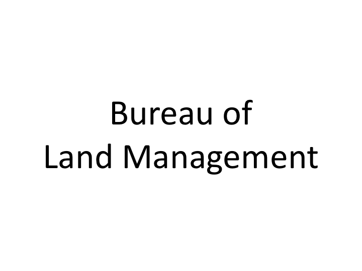BLM text logo.png