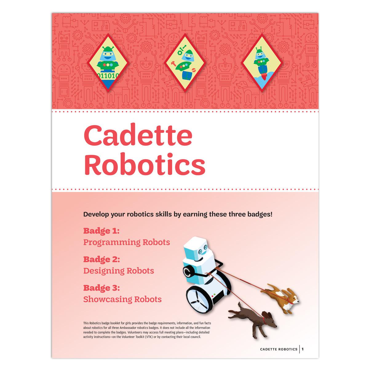 Cadette Robotics Image.jpg