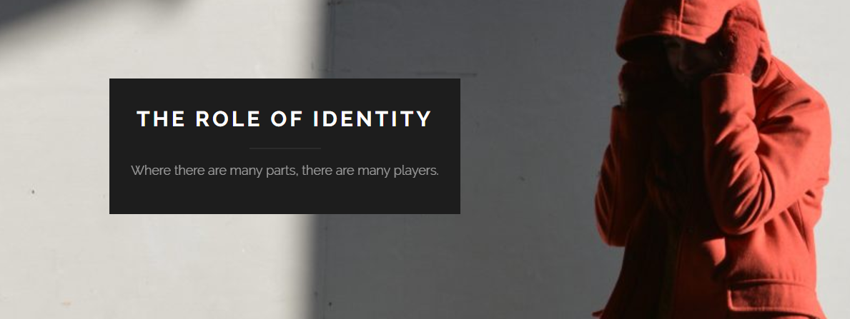 The Role of Identity - The Role of Identity is a blog that collects a series of interviews about artists that uncover the fulfillment and confinement in reaching one's aspired identity.