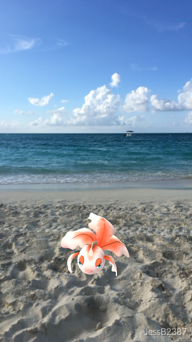 Pokemon working on their tan on Grace Bay Beach - image by JessB2387