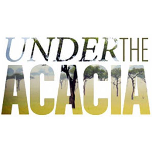 coalition-UndertheAcacia.jpg