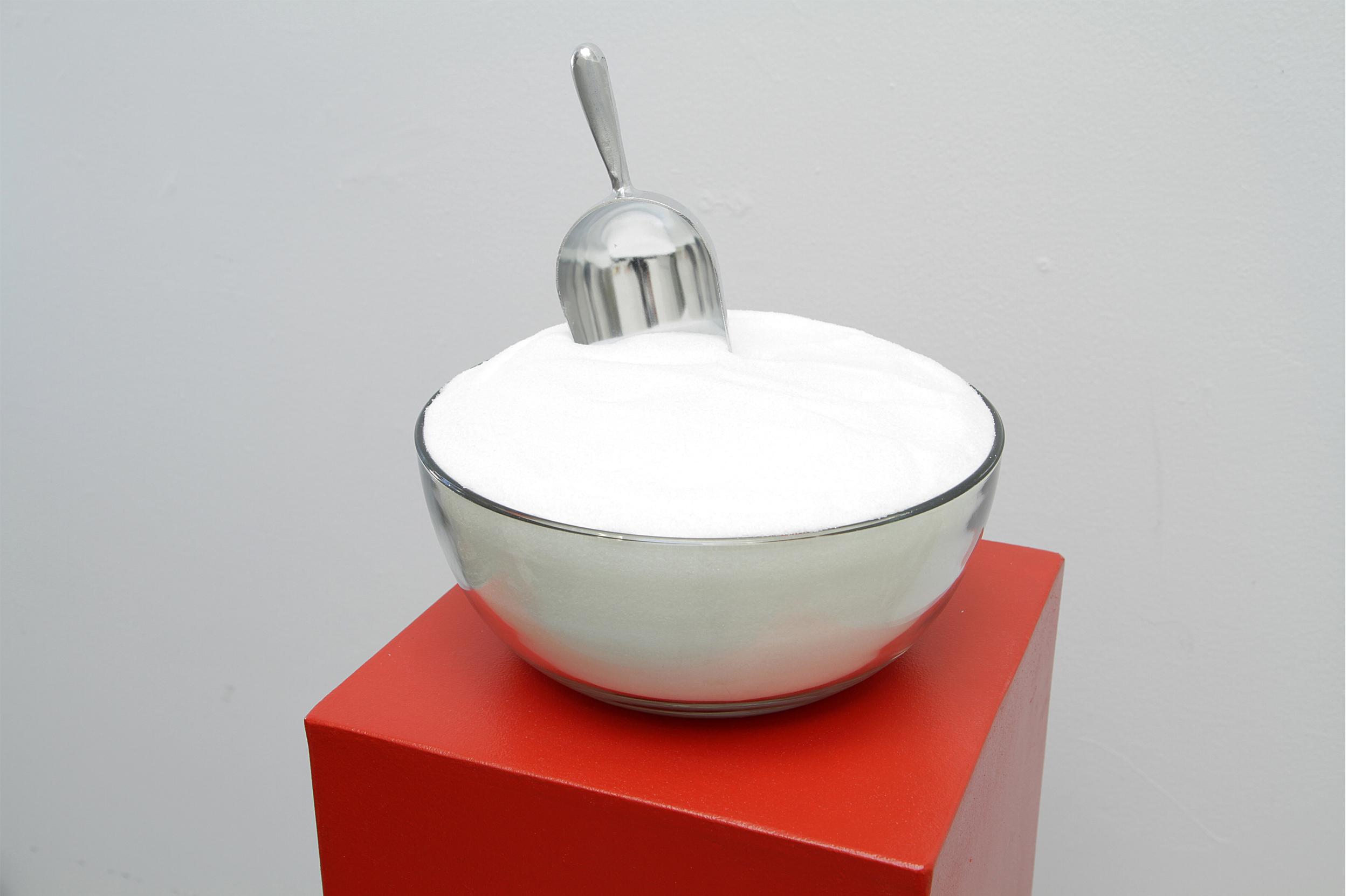 Appetite Apparatus #2 (Monosodium Glutamate, Stimulant)  (detail view) 2011 Wood, paint, glass bowl, aluminum scoop, monosodium glutamate (MSG) Dimensions variable