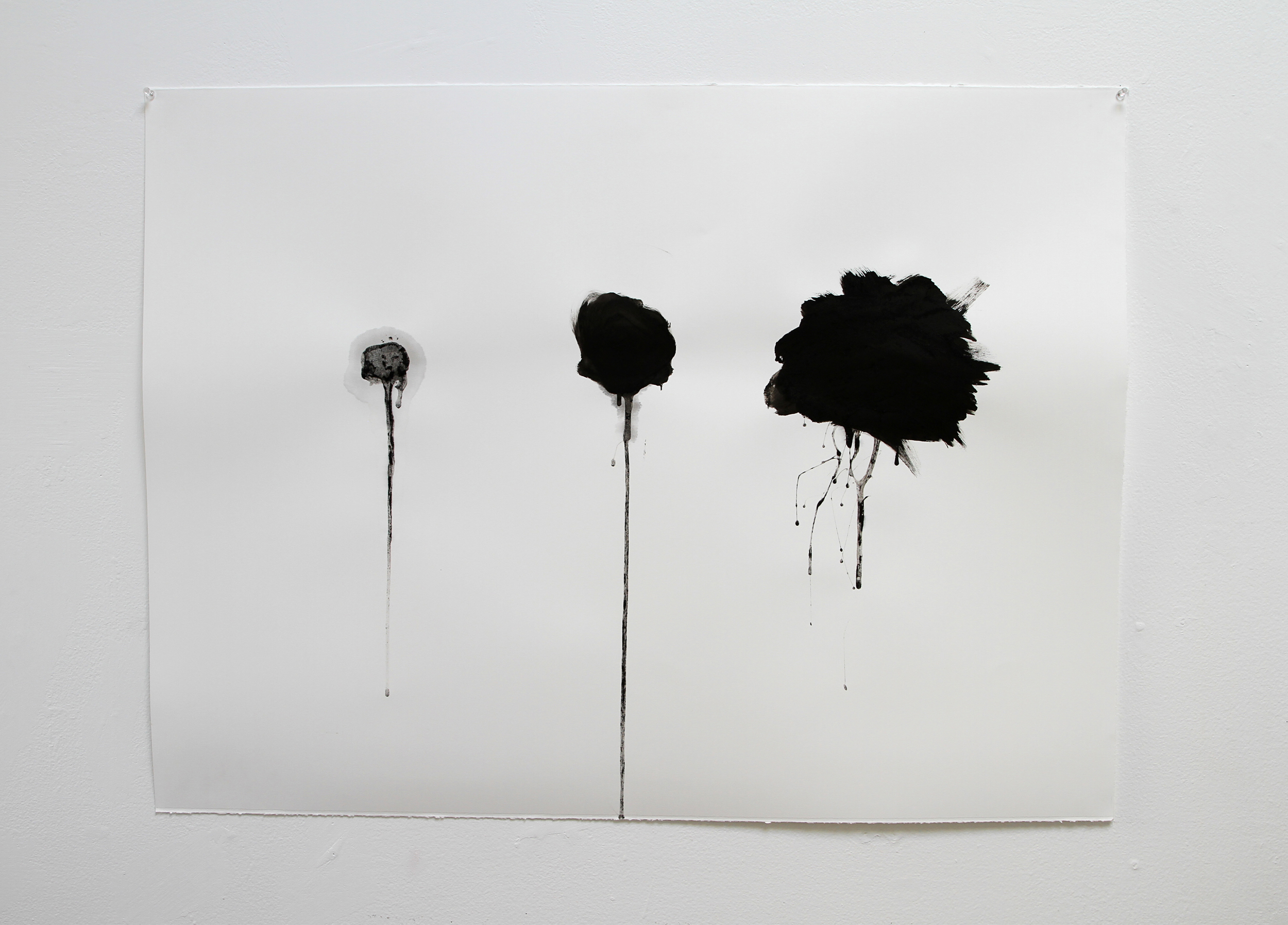Attempting to Capture Taste #2  2012 Squid ink applied by tongue on paper 30x40 inches