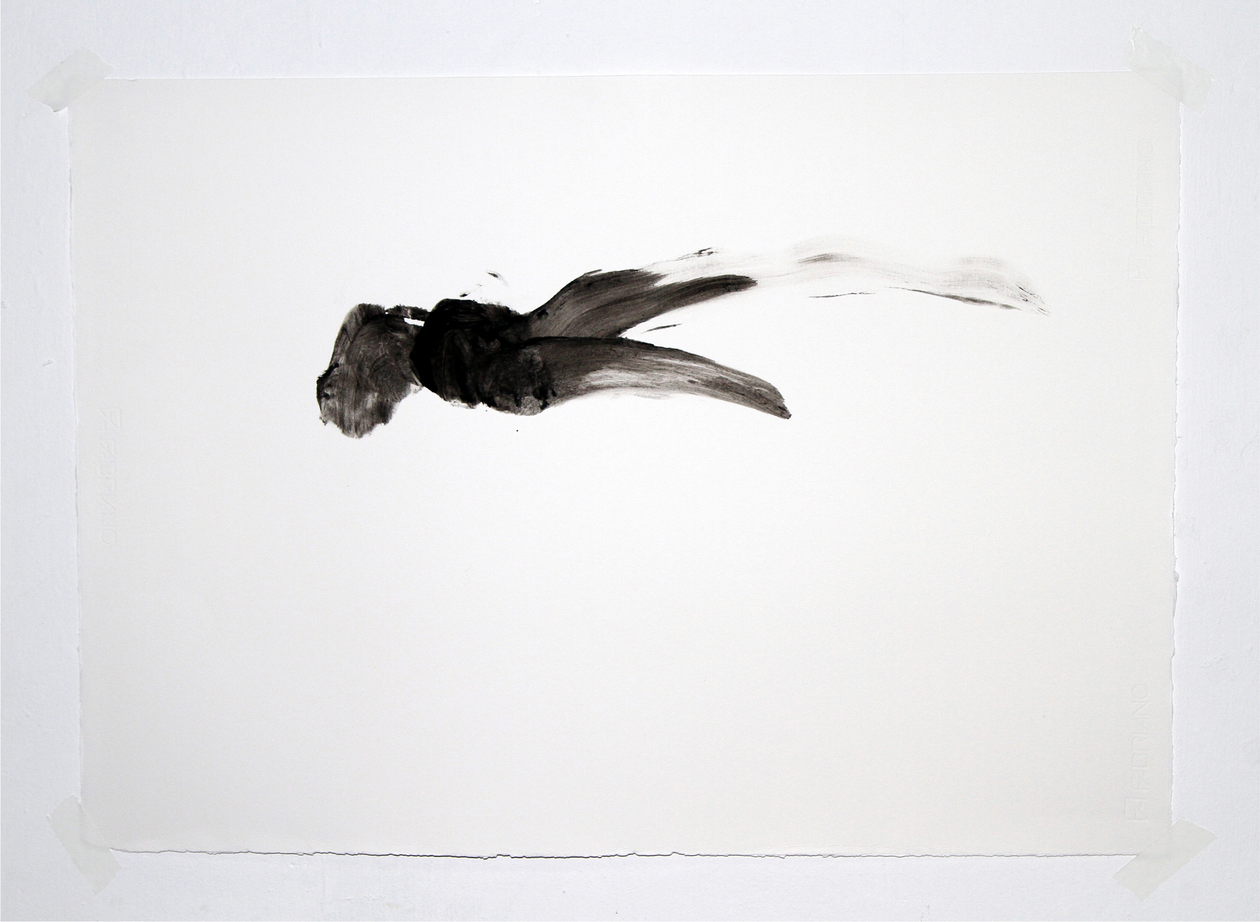 Attempting to Capture Taste (Movement #2)  2012 Squid ink applied by tongue on paper 30x40 inches