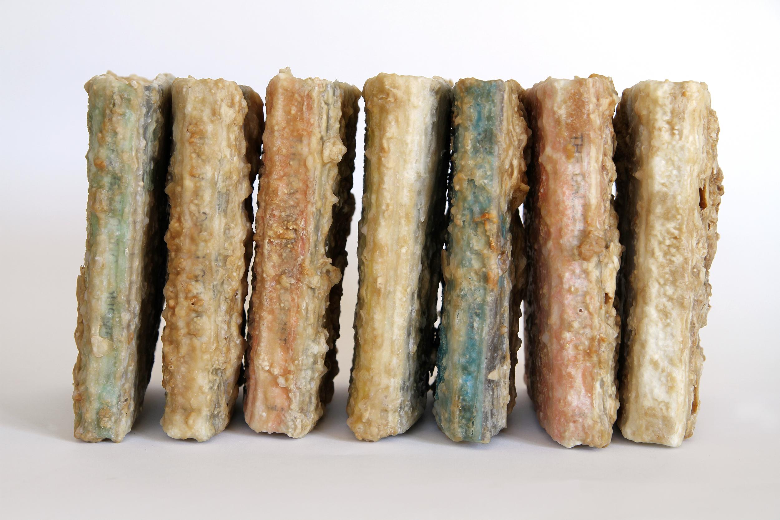 Relic (The Galloping Gourmet Television Cookbook Volume I – VII, Graham Kerr)  2013 Found book, monosodium glutamate (MSG), epoxy Dimensions variable