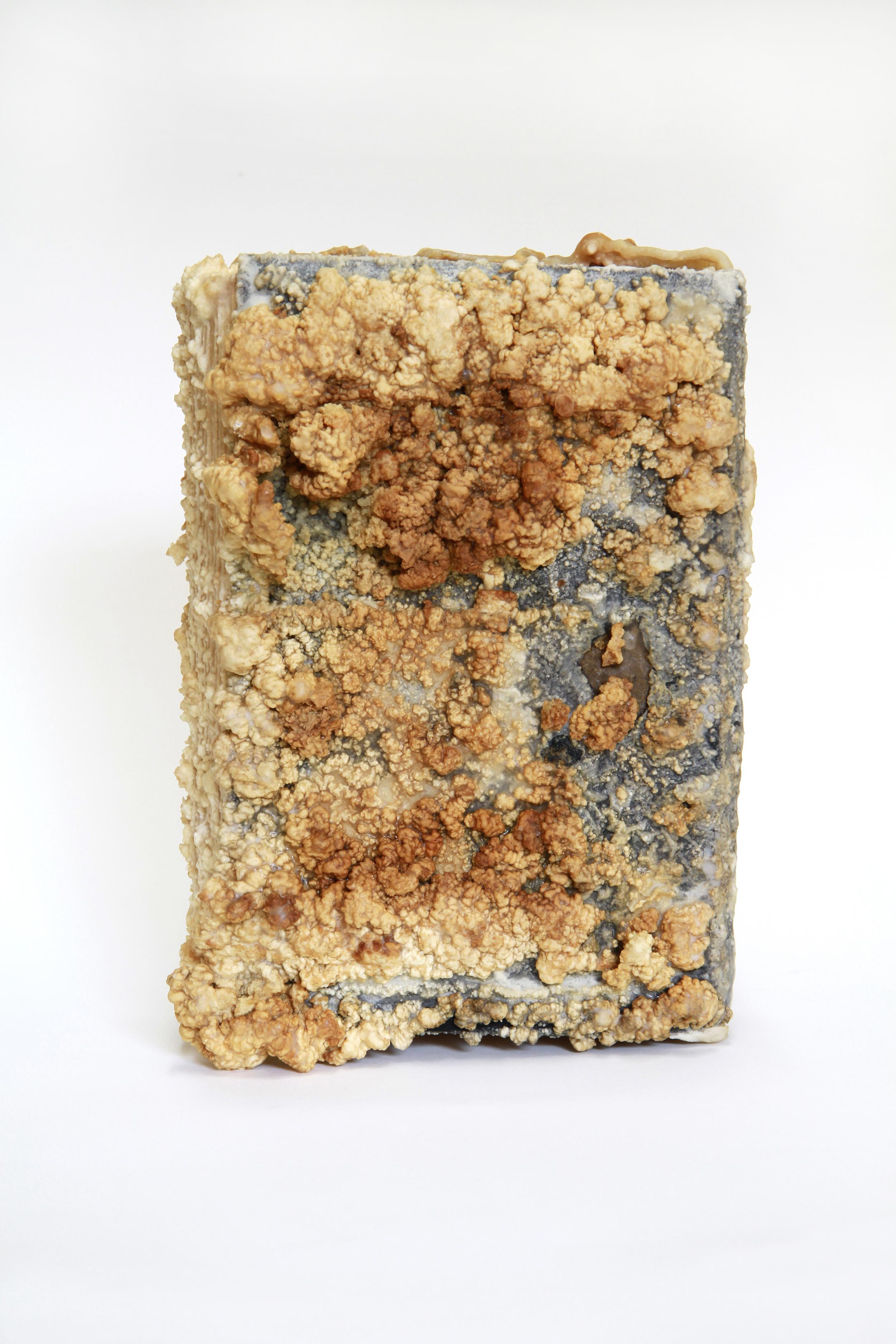 Relic (Amy Vanderbilt's Complete Book of Etiquette, Amy Vanderbilt)  2013 Found book, monosodium glutamate (MSG), epoxy 7x9.5x3.5 inches