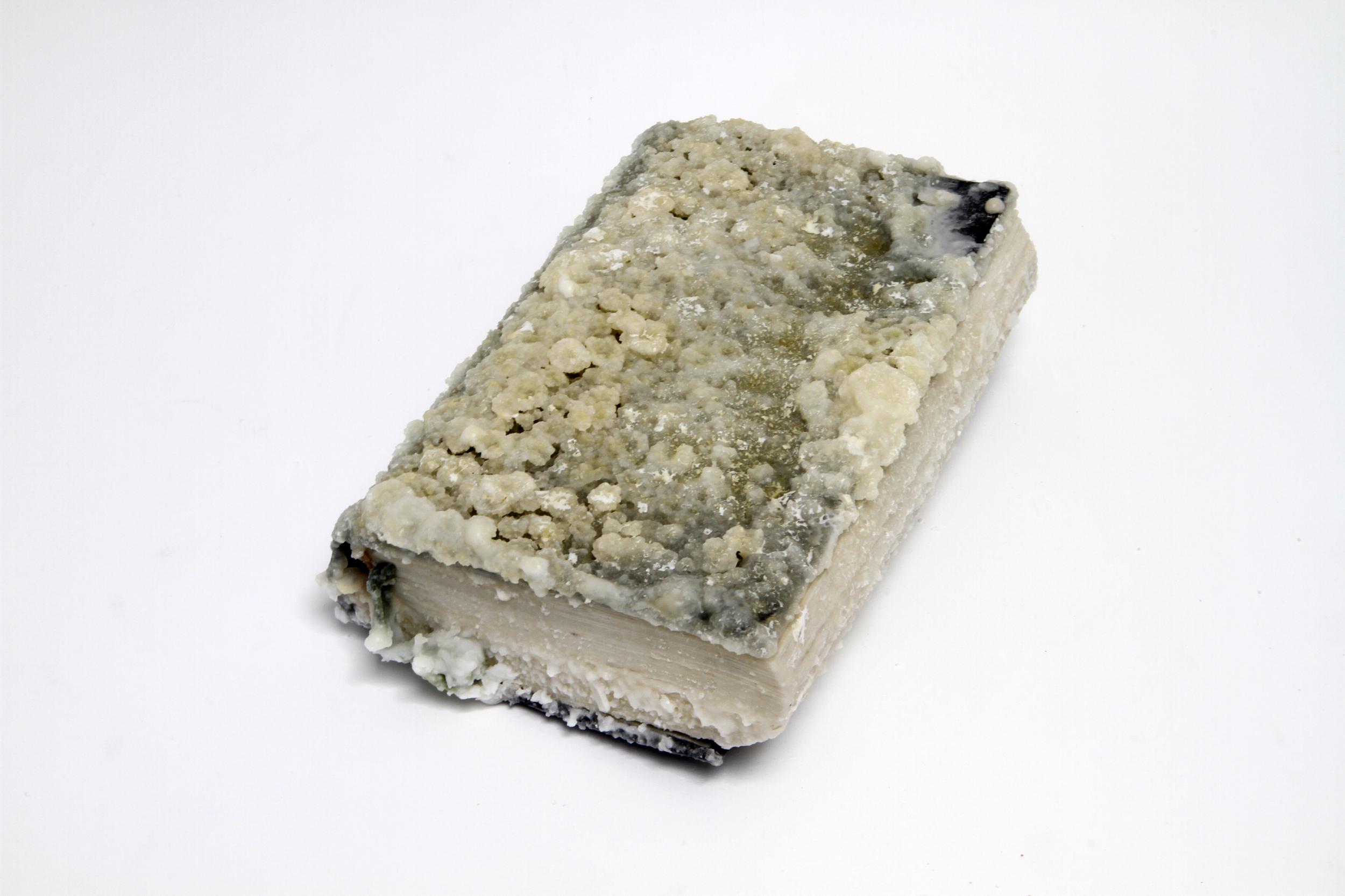 Relic (Physiology of Taste, Jean Anthelme Brillat-Savarin)  2012 Found book, monosodium glutamate (MSG), epoxy 5.5 x 2 x 8.5 inches