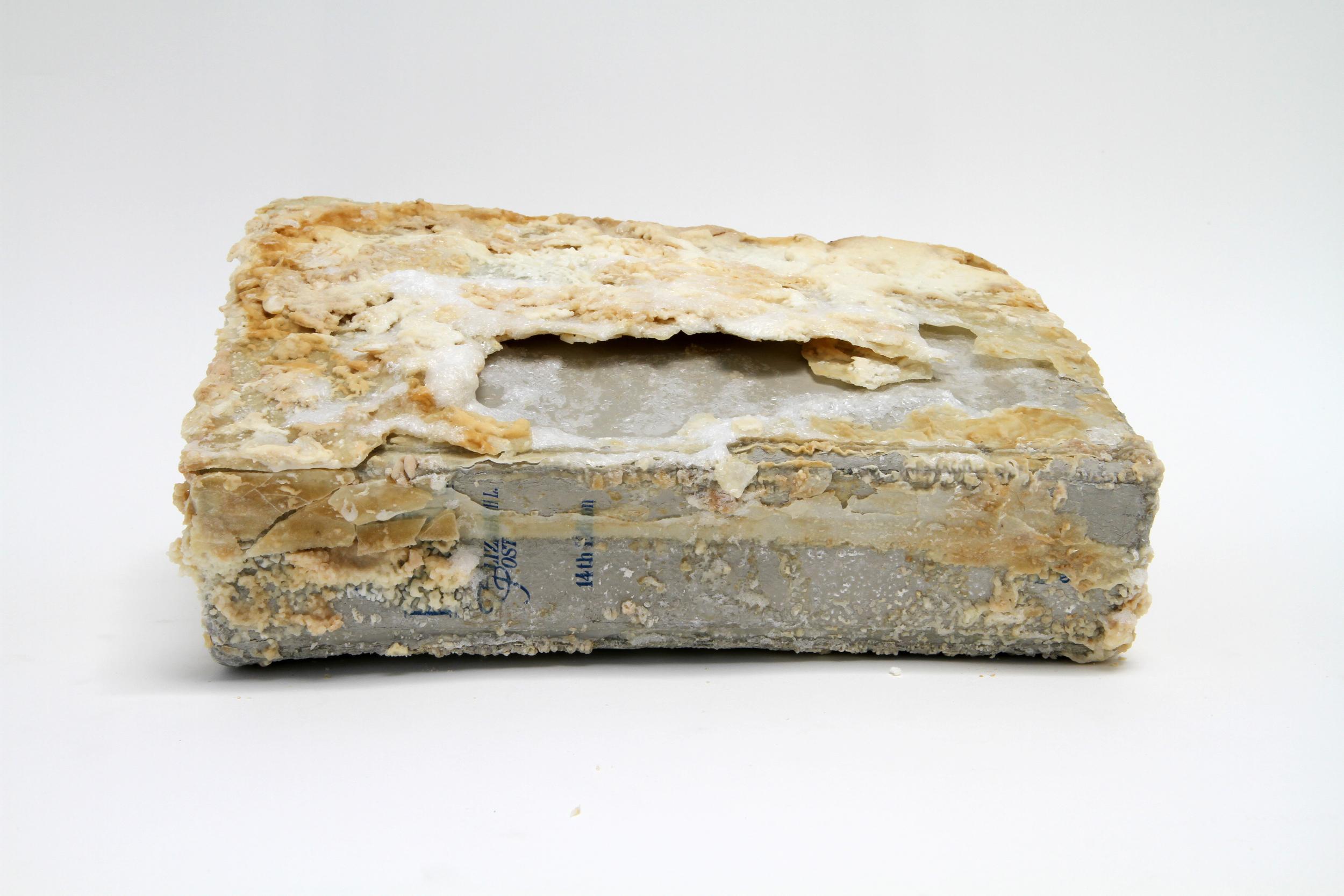 Relic (Emily Post's Etiquette, Elizabeth L. Post)  2012 Found book, monosodium glutamate (MSG), epoxy 10 x 7 x 2 inche s