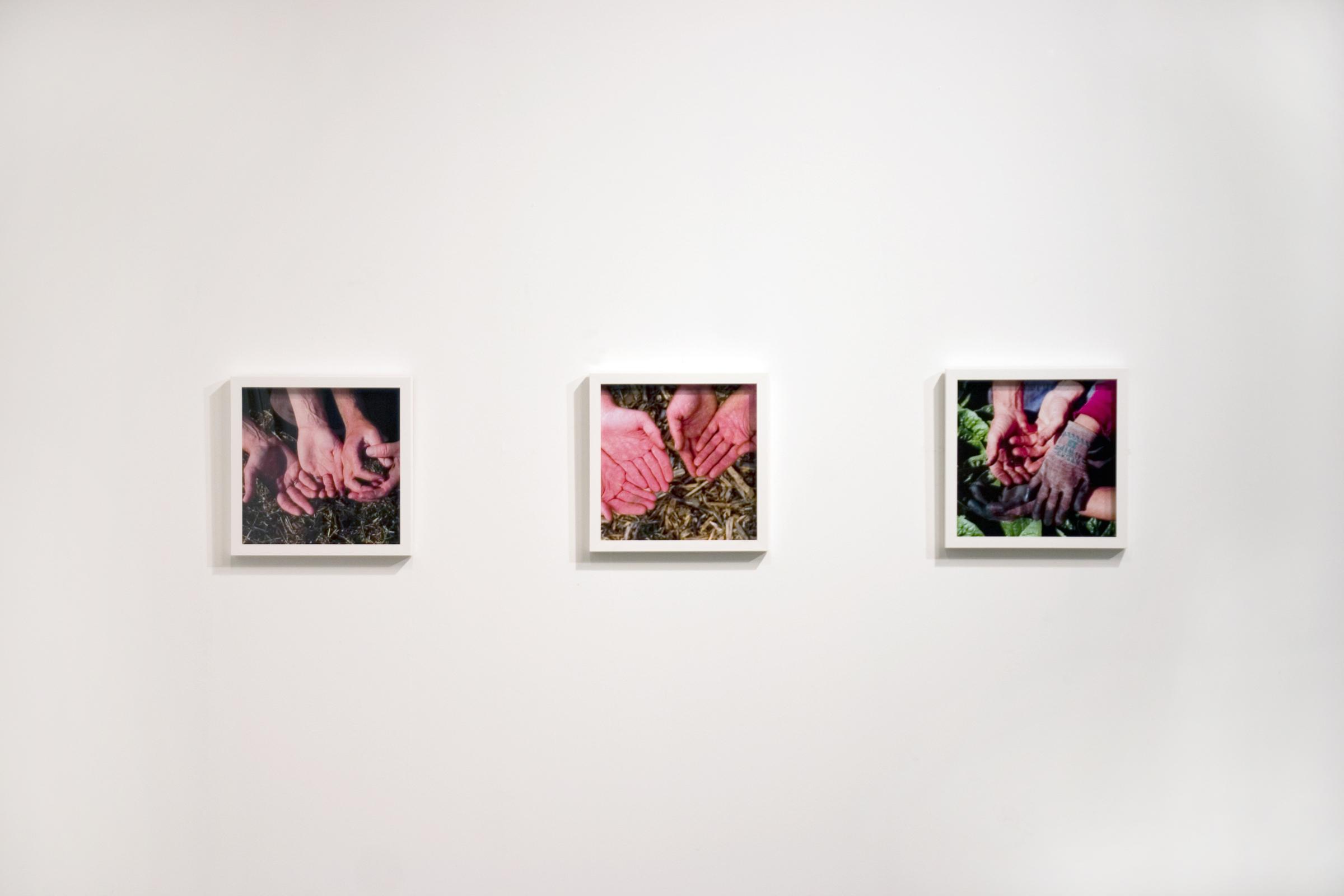 Hands  2008 11 lightjet prints (framed) 12 X 12 inches each