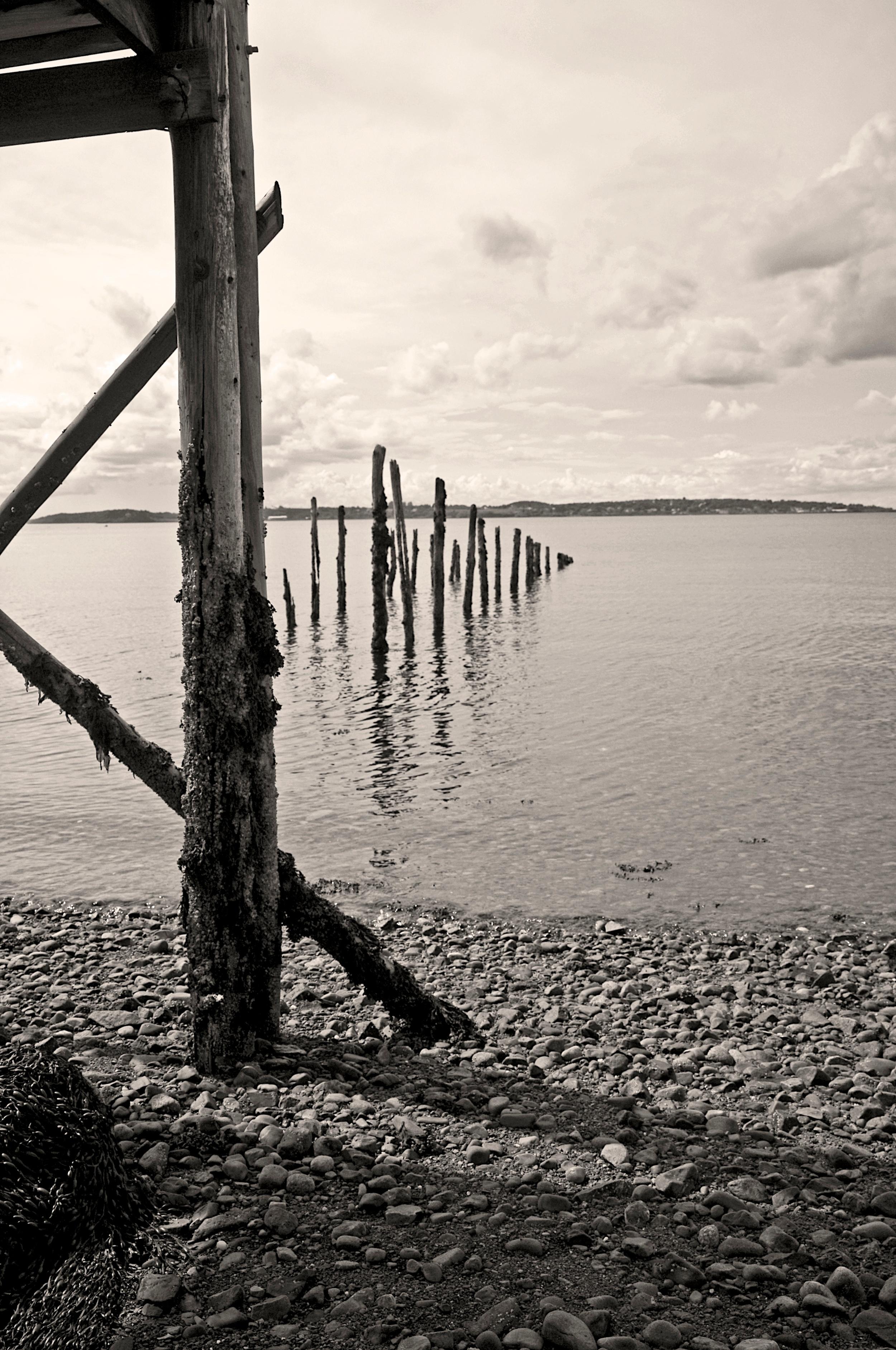 Low Tide, Campobello--SOLD