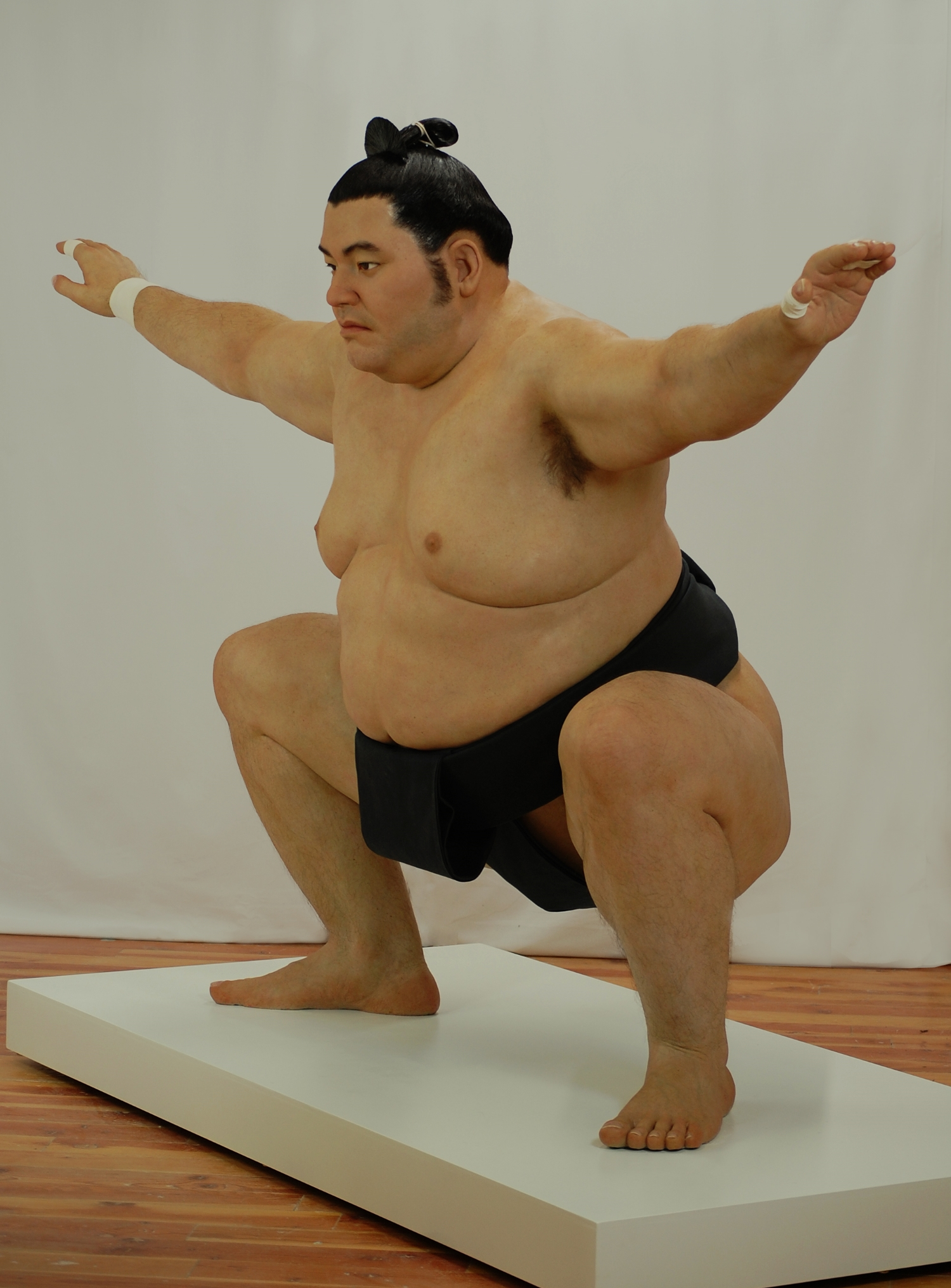 """Sumo"" - Silicone and mixed media"